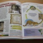 Книги для детей 1-2 лет